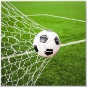 Goal-Pic-1